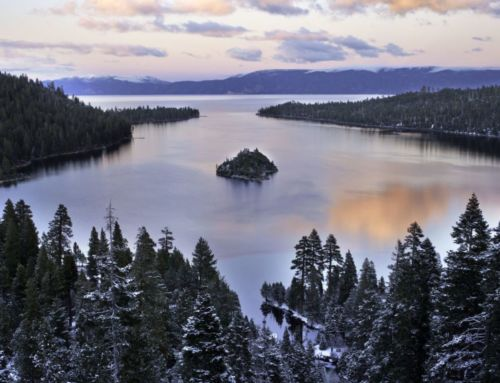 North Lake Tahoe-Truckee Real Estate: Light Movement in Sales