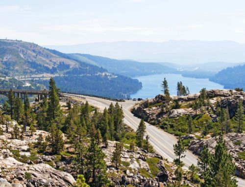 North Lake Tahoe-Truckee Real Estate: A Great Year for Local Sales