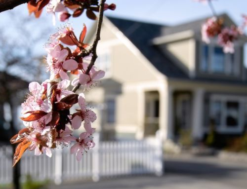 How-To: Get Your Home Ready for Spring Buying Season in a Hot Market