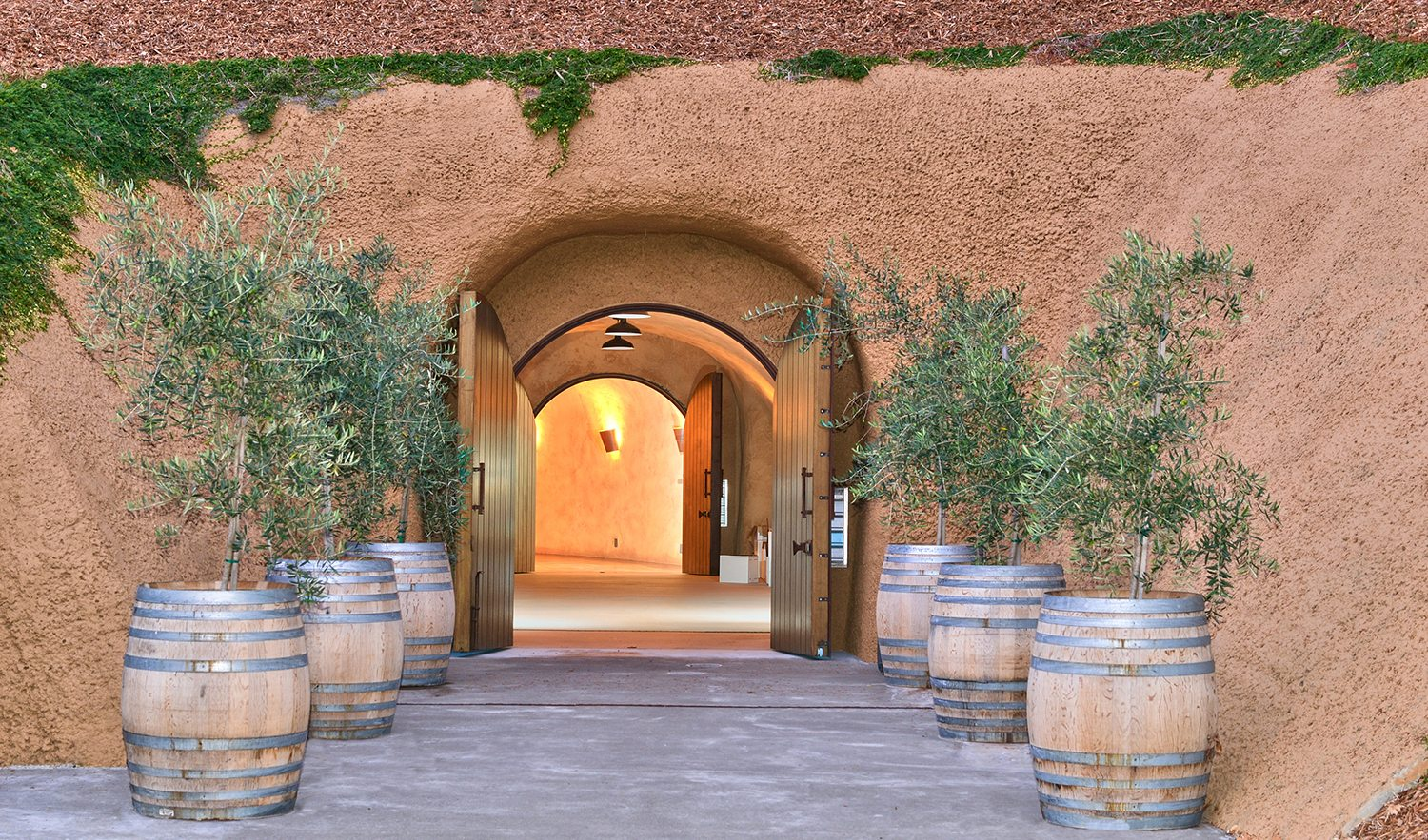 Interiors Envy: A Magical Wine Cave in Healdsburg