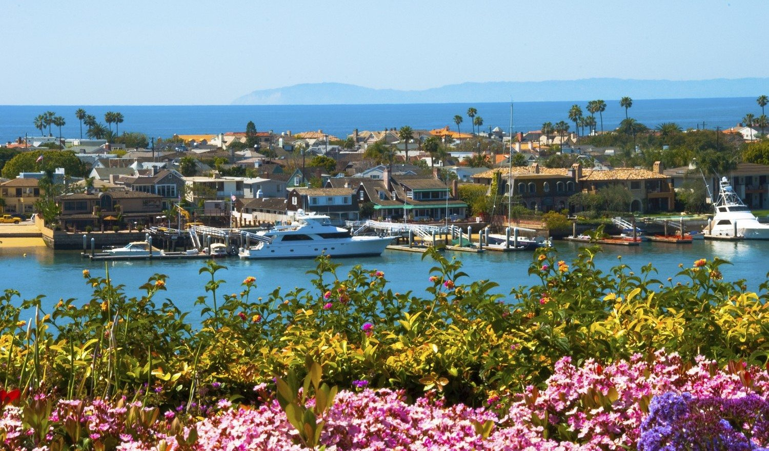 """""""A scene in Newport Beach in Orange County with houses and yachts in Lido Isle, Newport Bay,  Santa Monica Mountains (and the city of Malibu) in the background and plants and flowers in the foreground."""""""