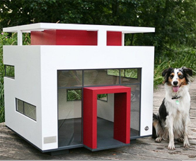 The posh side of pups in the doghouse for national pet for Big modern dog house